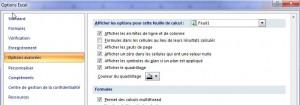 Fenêtre des options avancées d'Excel